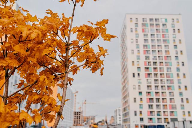 В Петербурге «Эталон» начал строить ЖК за Варшавским вокзалом
