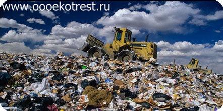 Вывоз мусора наиболее дорог в Подмосковье и Ленобласти