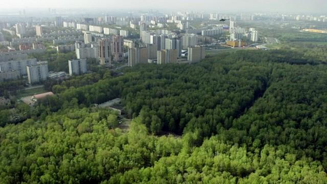 Президент подписал закон о «зеленых поясах» вокруг крупных городов
