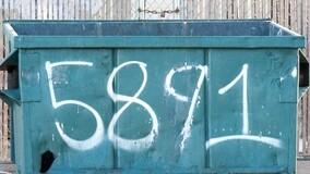 Минприроды назвало регионы, где мусорная реформа забуксовала