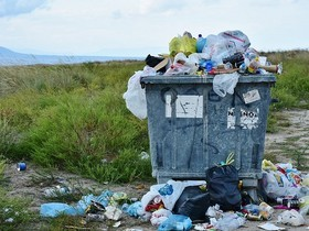Госдума: в 19 регионах сложилась опасная ситуация с мусором