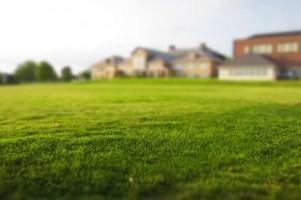 У землевладельцев могут возникнуть проблемы из-за ЕГРН