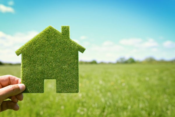 Можно ли арендовать землю, а потом получить ее бесплатно?