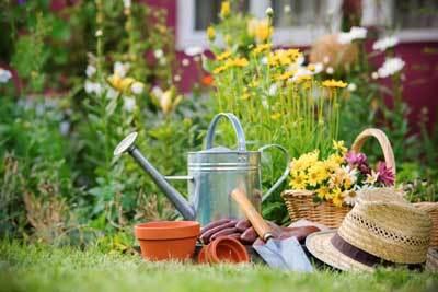 Правительство разрешило вести коммуникации по землям садоводств