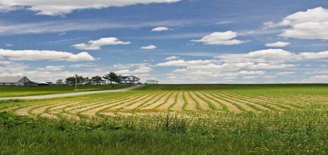 Суд впервые отобрал у собственника землю за ненадлежащее использование
